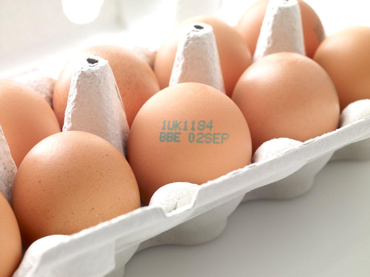 Ax-Serie Kontinuierlicher Tintenstrahldrucker Eier