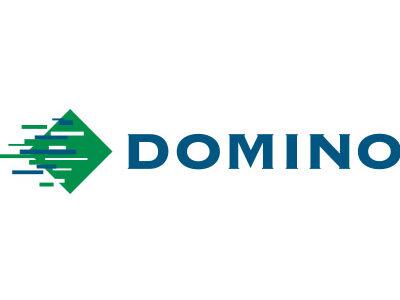 Domino Brand Logo